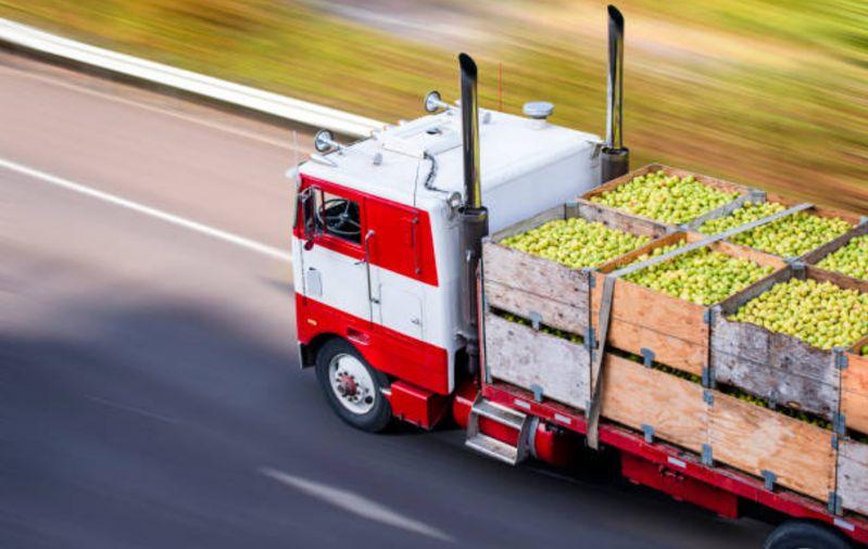 Qué es logística alimentaria
