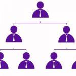 jerarquia en la empresa