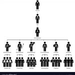 organización de la empresa
