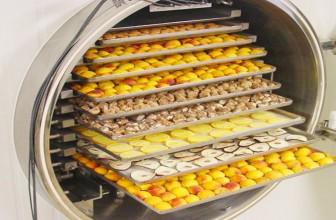 Liofilización en la industria alimentaria: qué es y como se hace