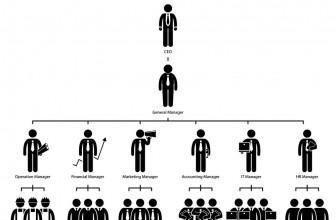 Estructura organizativa de la empresa: tipos y finalidad